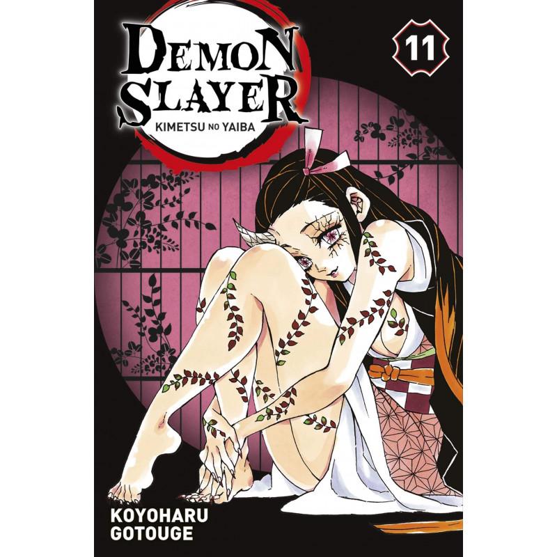 Demon Slayer Vol.11